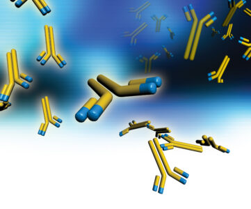 Oligoclonal Antibodies Offer a Multi-Pronged Attack Against Disease